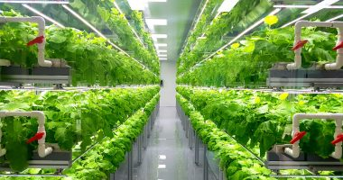 CubicFarm Systems announces biggest deal to date - The Market Herald Canada