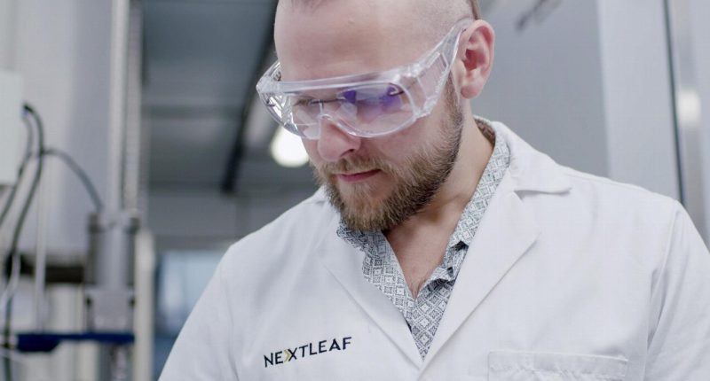 Nextleaf Solutions - CEO and Founder, Paul Pedersen - The Market Herald Canada