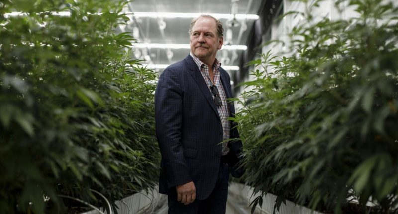 Aurora Cannabis Inc. - Founder, Terry Booth - The Market Herald Canada