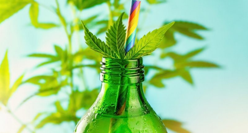 Tinley's (CSE:TNY) expands cannabis beverage supply chain with new partnership