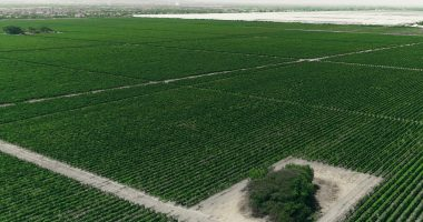 Water Ways (TSXV:WWT) signs first irrigation project in Canada