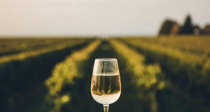 Vintage Wine Estates (TSX:BC.WT.U) releases  shareholder passport program