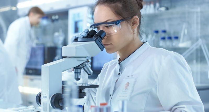 Algernon Pharmaceuticals (CSE:AGN)  to conduct DMT Stroke Program study