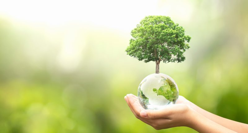 Leon's subsidiary (TSX:LNF) The Brick going green for Earth Day