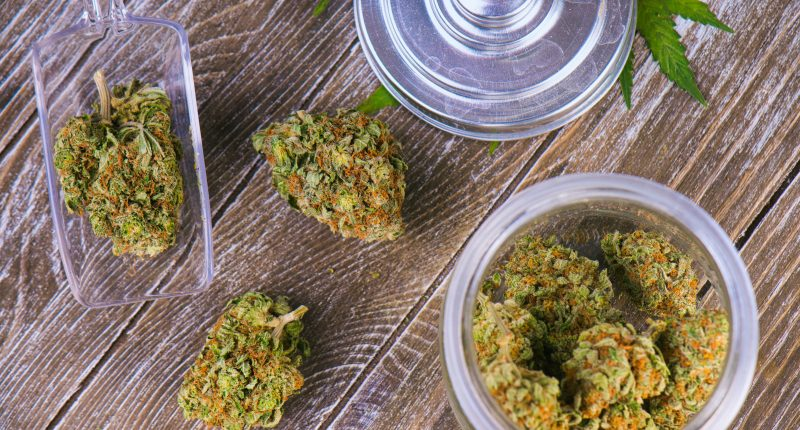 Vibe Growth (CSE:VIBE) expands into Massachusetts cannabis market