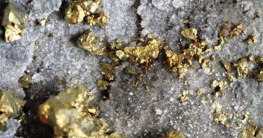 Metallica Metals (CSE:MM) purchases net profit interest on MX Gold (TSXV:MXL) property