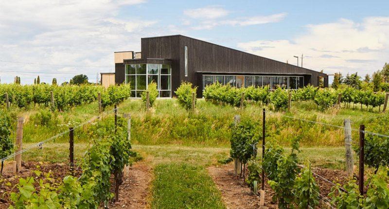 Diamond Estates Wines & Spirits (TSXV:DWS) announces closing of private placement