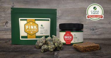 VIVO Cannabis (TSX:VIVO) launches Canna Farms Brick Hash and Pink Kush