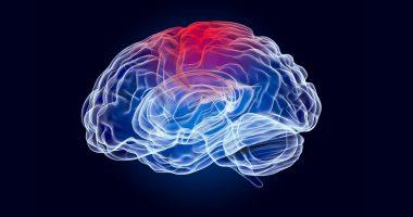 Alpha Cognition (TSXV:ACOG) announces $12.5 million public offering