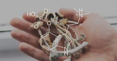 Psyence Group (CSE:PSYG) and Pure Extracts (CSE:PULL) form psychedelics joint venture